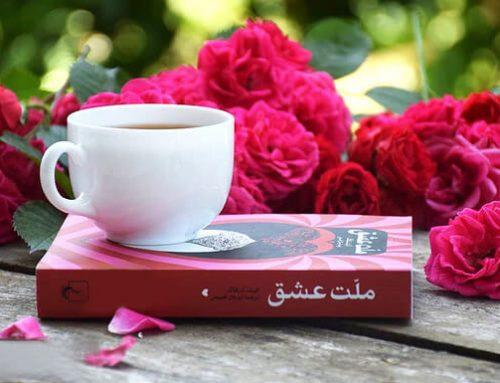ملت عشق ، دزدی به سبک ادبی از فرهنگ ایران زمین
