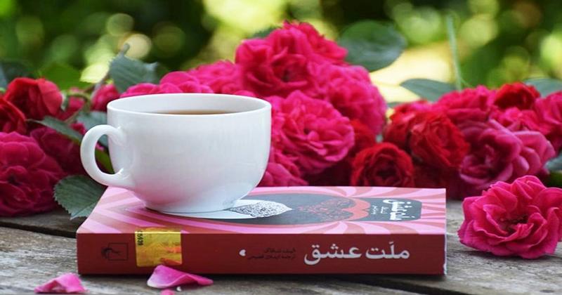 نقد کتاب ملت عشق